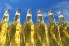 Bottles of beer. Bottled of beer with blue bright sky as background Royalty Free Stock Photo