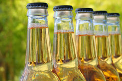Bottles of beer. Outside with natural background Royalty Free Stock Photos