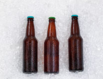 Bottles of beer being chilled on pile of ice Royalty Free Stock Photo