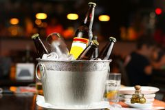 Bottles of beer in bucket with ice royalty free stock image