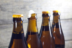 Bottles of beer closeup Royalty Free Stock Images