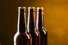 Bottles of beer with drops. Stock Image