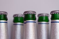 Bottles of beer in the frodge Royalty Free Stock Images