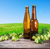 Bottles of beer and hops branch Stock Photo