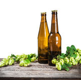 Bottles of beer and hops branch Stock Photography