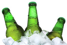 Bottles of beer are in ice Royalty Free Stock Photos