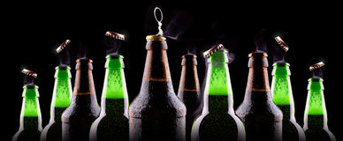 Bottles of beer on ice Stock Images