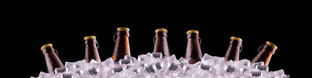Bottles of beer on ice Stock Image