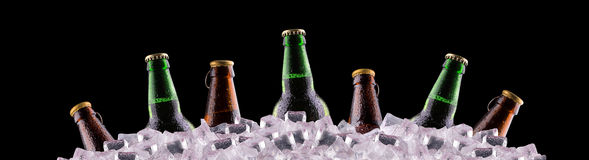 Bottles of beer on ice Royalty Free Stock Photo