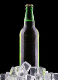 Bottles of beer on ice Royalty Free Stock Image