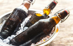 Bottles of beer in ice cubes Royalty Free Stock Photo