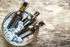 Bottles of beer in ice cubes Stock Image