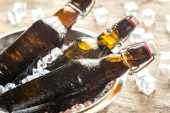 Bottles of beer in ice cubes Stock Photos