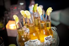 Bottles of Corona beer in a bucket. Bottles of Corona beer with lime in a bucket served for clients stock image
