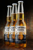 Bottles of Corona Extra beer. POZNAN, POLAND - APRIL 23, 2016: Corona Extra, one of the top-selling beers worldwide is a pale lager produced by Cerveceria Modelo stock image