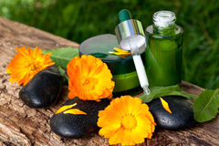 Bottles of cream, serum with orange marigold flowers. spa concept Stock Photo