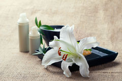Bottles of creams/lotions with lilies. Face/body care concept: bottles of creams/lotions/serums with white lily flowers, closeup shot Royalty Free Stock Photos