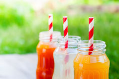 Bottles Different Fruit Color Juice Garden Party Stock Photo