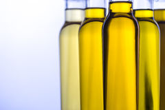 Bottles with different kinds of vegetable oil Royalty Free Stock Photo