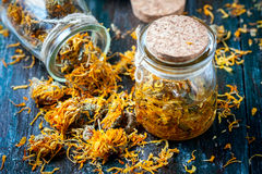 Bottles and dried calendula officinalis petals with macerated oil on wooden background. Royalty Free Stock Photography