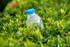 bottles of drinking Royalty Free Stock Photo