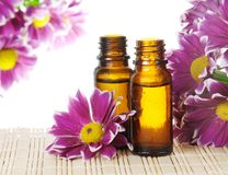 Bottles of Essential Oil stock images