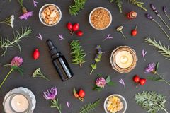 Bottles of essential oil with frankincense, hyssop, myrrh, rosemary, wormwood. Bottles of essential oil with frankincense, hyssop, mountain savory and other stock image
