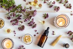 Bottles of essential oil with blooming oregano, frankincense and royalty free stock photo