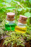 Bottles of essential oil or magic potion on moss Royalty Free Stock Photo