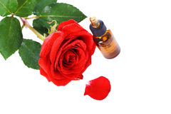 Bottles of essential oil and red rose Stock Images