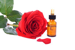 Bottles of essential oil and red rose Stock Photos