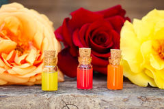 Bottles of essential oil and roses Stock Images