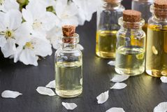 Bottles of essential oil with white blossoms Royalty Free Stock Photo