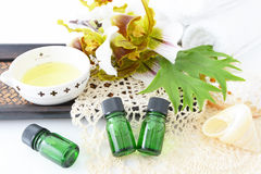 Bottles of essential oils Stock Image