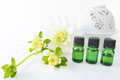 Bottles of essential oils Stock Photos
