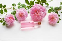 Bottles of essential rose oil for aromatherapy, Huntington Rose. stock photo