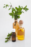 Bottles of Flower Oil and peppermint leaves Stock Image