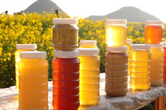 Bottles of fresh honey Stock Images