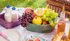Bottles of fresh milk, juice and fruit at a picnic Stock Photos