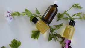 Bottles with geranium essential oil. Herbal cosmetic treatment products stock video footage