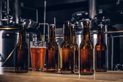 Bottles and glass of craft beer on wooden bar counter at the indie brewery. royalty free stock photos