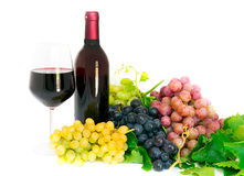 Bottles and glasses of wine Royalty Free Stock Photo