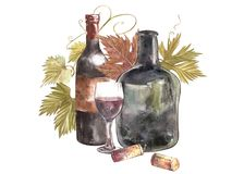 Bottles and glasses of wine and leaves of grapes, isolated on white. Hand drawn watercolor illustration. Bottles and glasses of wine and leaves of grapes Stock Image