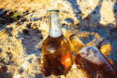 Bottles with golden beer in sawdust. Two fresh bottles of beer in the sawdust in the sun Stock Photo