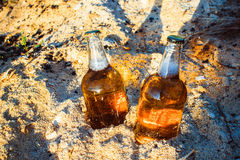 Bottles with golden beer in sawdust. Two fresh bottles of beer in the sawdust in the sun Royalty Free Stock Photography