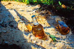 Bottles with golden beer in sawdust. Two fresh bottles of beer in the sawdust in the sun Stock Images