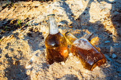 Bottles with golden beer in sawdust. Two fresh bottles of beer in the sawdust in the sun Royalty Free Stock Photos