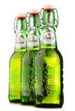 Bottles of Grolsch beer isolated on white Stock Images