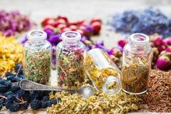 Bottles of healing herbs. Stock Images