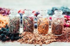 Bottles of healing herbs, herbal medicine. Stock Photography